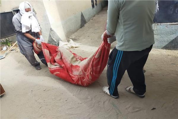 Photo of سيدة مصرية تقتل زوجها بخطة ماكرة بعد الإفطار