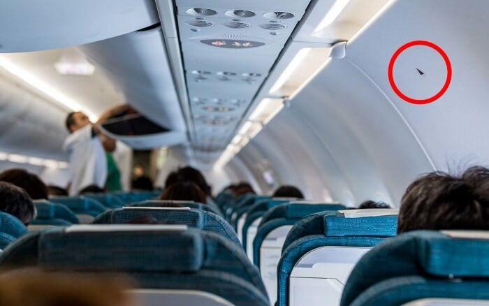 Photo of ماذا تعني هذه المثلثات الصغيرة داخل الطائرات؟