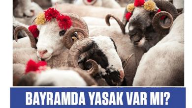 Photo of هل سيكون هناك حظر تجول في عيد الأضحى؟ .. و متى موعد عيد الأضحى في تركيا؟