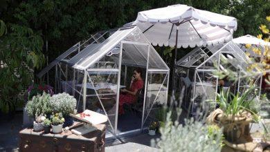 Photo of تحدياً لفيروس كورونا مقهى يضع غرف زجاجية خاصة للزبائن