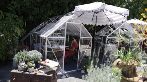 تحدياً لفيروس كورونا مقهى يضع غرف زجاجية خاصة للزبائن