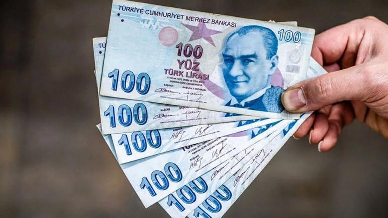 للسوريين المجنسين في تركيا.. كيفية التقديم على المساعدة المالية الحكومية 6