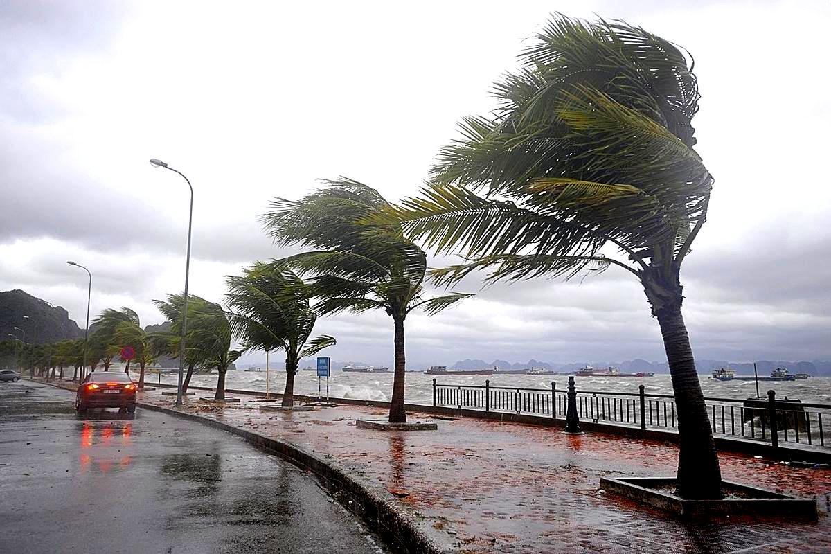 الأرصاد التركية تطلق الإنذار الأصفر لـ11 مدينة.. وإدارة الكوارث تحذر من الفيضانات 7