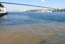 اسطنبول:تحول مياه البوسفور إلى اللون البني يثير قلق المواطنين 4