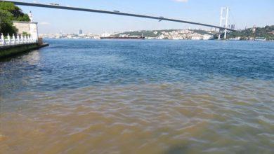 اسطنبول:تحول مياه البوسفور إلى اللون البني يثير قلق المواطنين 3