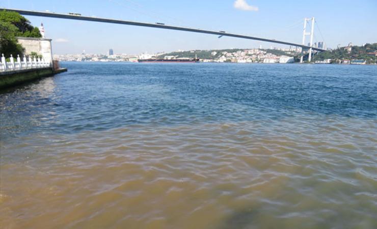 اسطنبول:تحول مياه البوسفور إلى اللون البني يثير قلق المواطنين 1